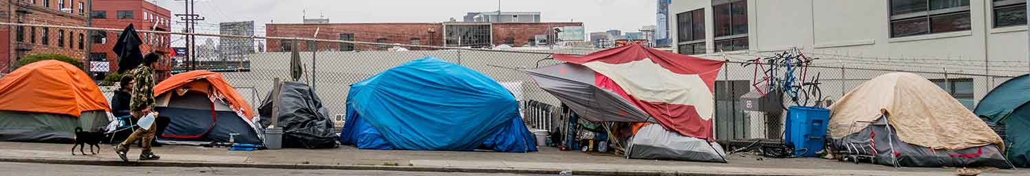 Homeless Camps Cleanout