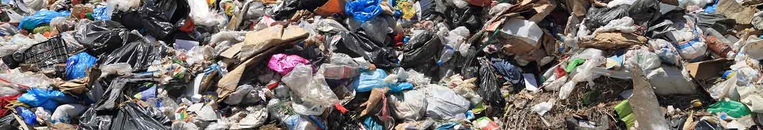Hoarding Trash